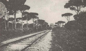La ferrovia attraversa la pineta - Anno 1922